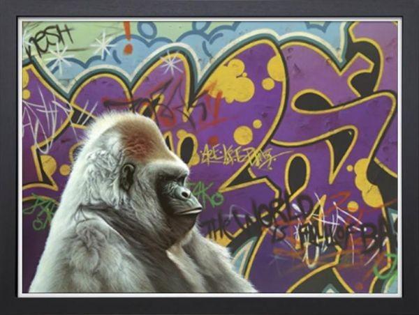Image of Urban Gorilla