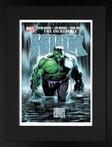 Signed Stan Lee The Incredible Hulk #77 - Tempest Fugit - Paper Edition image