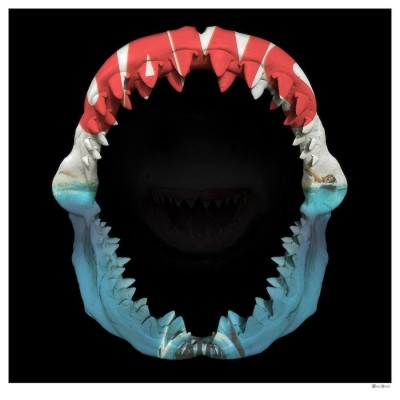 Jaws | Monica Vincent image