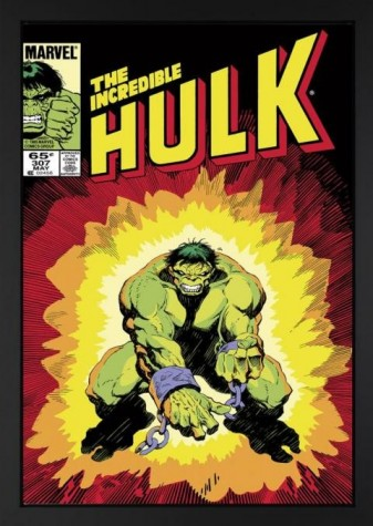 The Incredible Hulk #307 (Lou Ferrigno & Stan Lee Signed) image