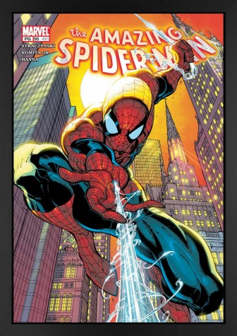 The Amazing Spider-Man #491 - Canvas Edition image