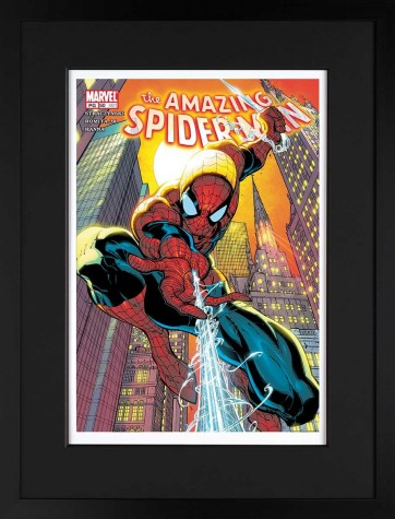 The Amazing Spider-Man #491 - Paper Edition image