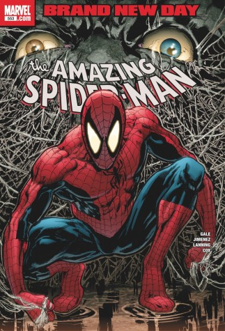 The Amazing Spider-Man #553 - Brand New Day, Signed by Stan Lee  image