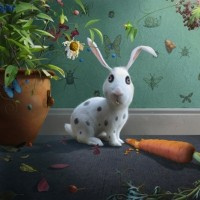 Mr Rabbit image